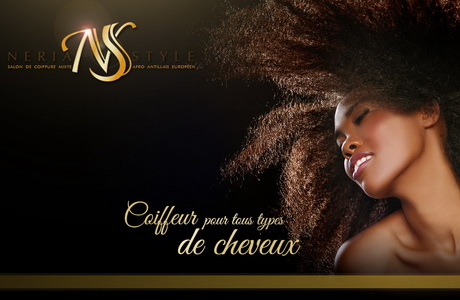 Coiffeur afro antillais for Salon coiffure afro antillais