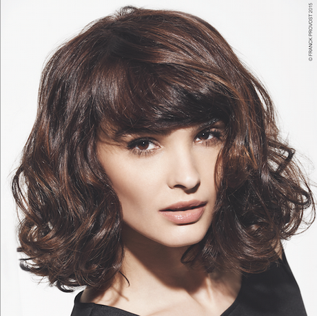 Franck provost modele de coiffure